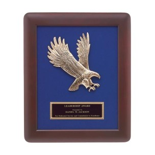 Soaring Eagle Frame Plaque