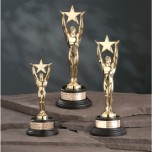 3818.29 - Star Achievement Award