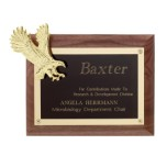 Gold Eagle Plaque