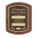Distinguished Service Award Plaque