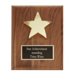 P1329 - 24K Gold Star on Hand Rubbed Walnut Plaque
