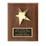 P1332 - Walnut Star Plaque