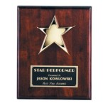 P8000 Star Plaque